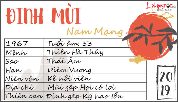 Tu vi 2019 tuoi Dinh Mui nam mang
