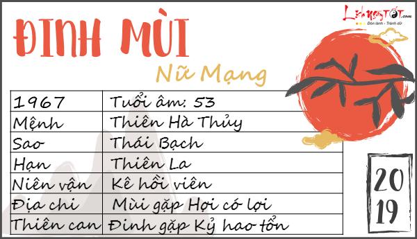 Tu vi 2019 tuoi Dinh Mui nu mang