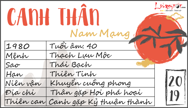 Tu vi 2019 tuoi Canh Than nam mang