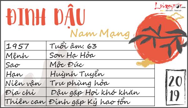 Tu vi 2019 tuoi Dinh Dau nam mang