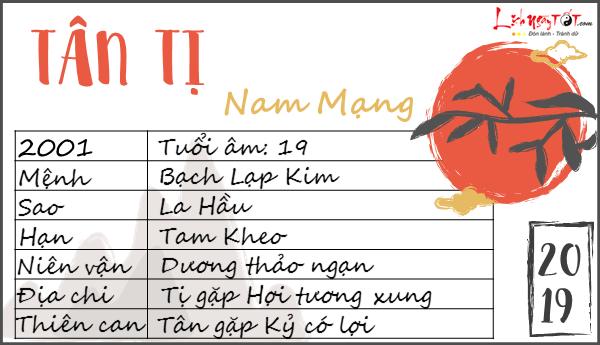 Xem tu vi 2019 tuoi Tan Ti nam menh chi tiet
