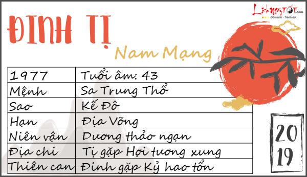 Tu vi 2019 tuoi Dinh Ti nam mang