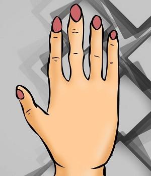 hinh dang ban tay so 4