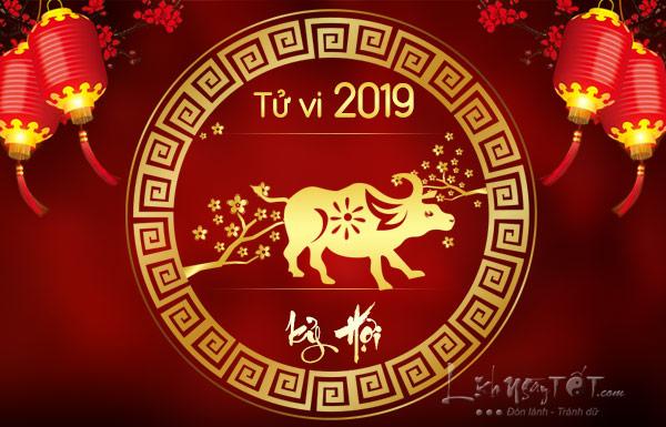 Tu-vi-tuoi-Suu-nam-2019-Ky-Hoi