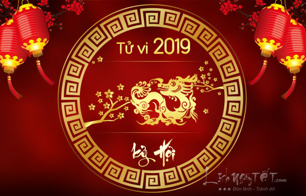 Tu-vi-tuoi-Thin-nam-2019-Ky-Hoi