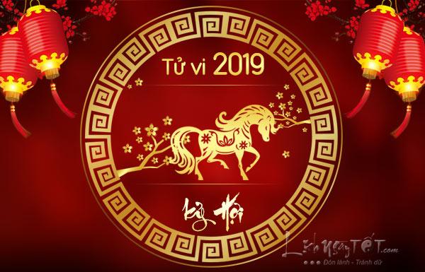 Tu-vi-tuoi-Ngo-nam-2019-Ky-Hoi