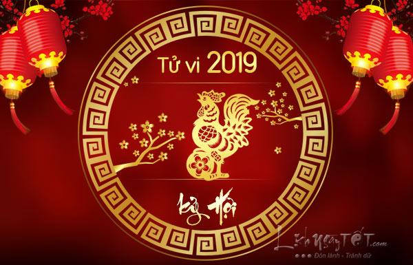 Tu-vi-tuoi-Dau-nam-2019-Ky-Hoi