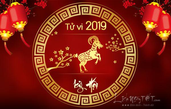 Tu-vi-tuoi-Mui-nam-2019-Ky-Hoi