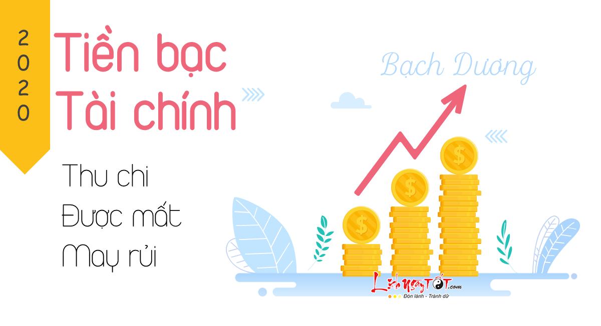 Tinh hinh tai chinh Bach Duong 2020