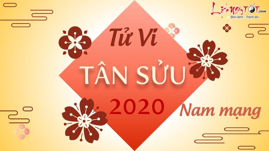 Tu vi 2020 Tan Suu nam mang