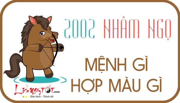 Sinh nam 2002 menh gi, tu vi tron doi tuoi Nham Ngo