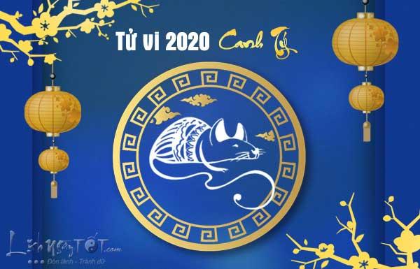 Tu-vi-tuoi-Ty-nam-2020-Canh-Ty