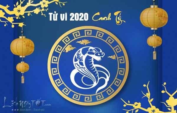 Tu-vi-tuoi-Ty-ran-2020-Canh-Ty