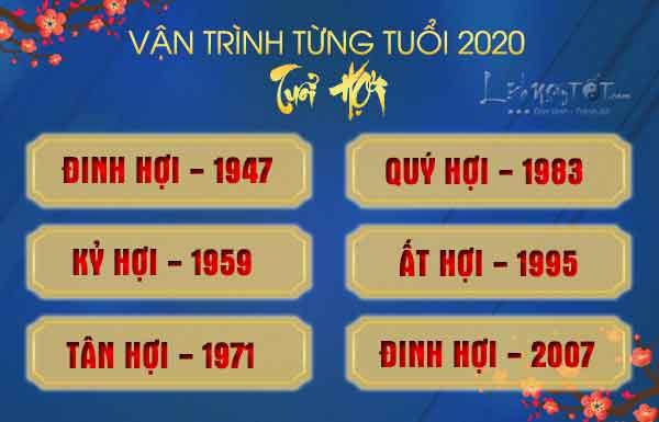 Tu-vi-2020-tuoi-Hoi-chi-tiet-theo-tung-tuoi