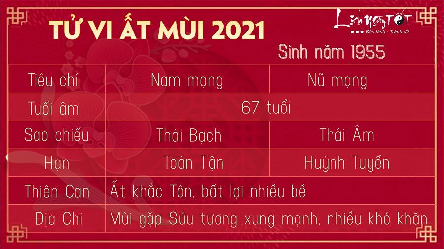 Tu vi tuoi At Mui 1955 nam 2021