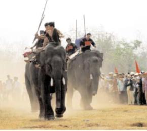 Lễ hội đua voi - hùng thiêng Tây Nguyên