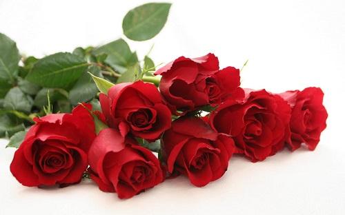 Chon ten theo hoa de mang lai may man cho be yeu hinh anh