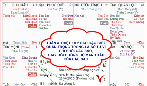 Luan giai cung Vo Chinh Dieu gap Tuan Triet an ngu trong tu vi hinh anh