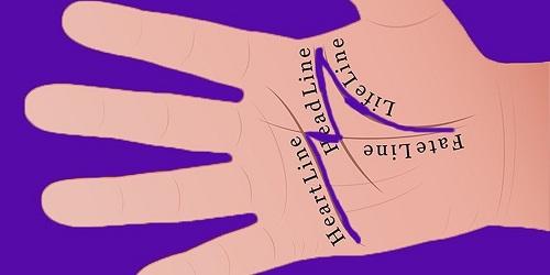 Sở hữu bàn tay chữ M, bạn có biết mình đặc biệt tới mức nào không?