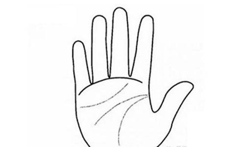 xem tuong tay hinh anh 3