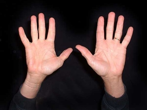 Đôi bàn tay của số mệnh vất vả, bôn ba đó đây