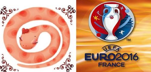 12 con giap va Euro 2016 Nguoi tuoi Ty  hinh anh