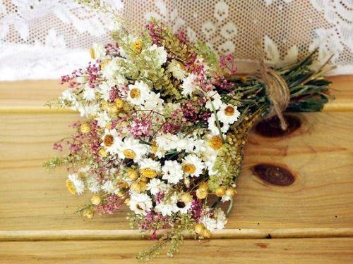 hoa gia phong thuy gia