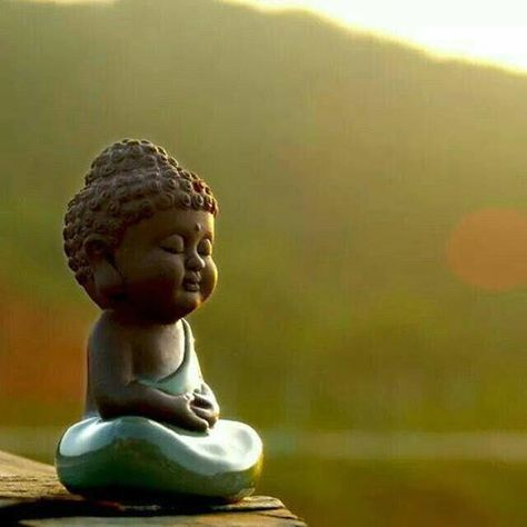 Loi khen hay tieng che khong quan trong bang tri tue