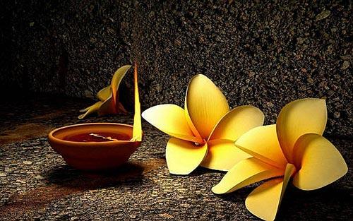 Phan biet dao hoa duyen va dao hoa kiep trong tu vi hinh anh 2