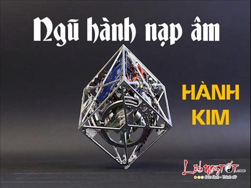 ngu hanh nap am la gi