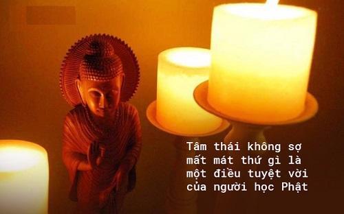 Loi Phat day ai cung co mot con bo va so mat no. Tam thai khong so mat mat thu gi moi la dieu tuyet voi cua nguoi hoc Phat
