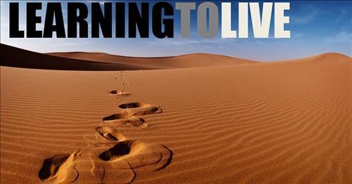 Những bài học cuộc sống đi ngược với lẽ thường của xã hội