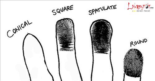 Vân ngón tay hé lộ điều gì về vận mệnh cuộc đời mỗi người?