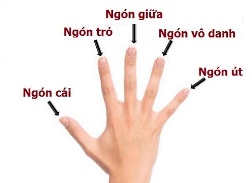 5 ngón tay tiết lộ cho bạn vận mệnh sang hèn