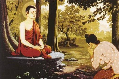Loi phat day khong khoe khoang kieu ngao