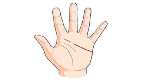 Dựa vào những dấu hiệu này trong lòng bàn tay, phụ nữ sẽ biết tương lai mình nên làm gì