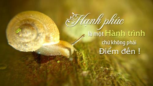 hanh phuc la 1 hanh trinh