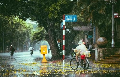 Dự báo thời tiết ngày mai 13/9: TP. Hồ Chí Minh và Đà Nẵng có dông bão