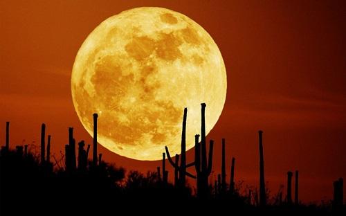Rằm tháng Giêng 2019: Việt Nam có thể xem siêu trăng với kích thước cực đại