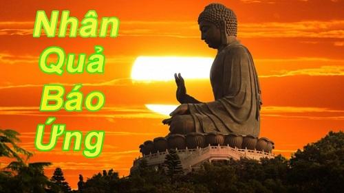 Loi phat day ve cuoc song Xin dung lam dieu trai luong tam, nhan qua la co that