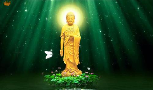 Lời Phật dạy về an nhiên giúp bạn mạnh mẽ trước mọi sóng gió