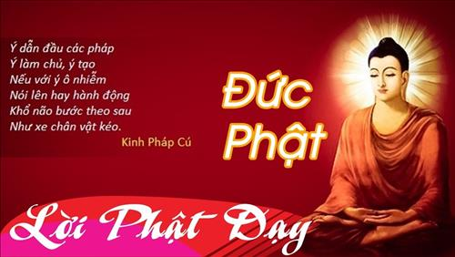 Loi Phat day ve dao lam nguoi