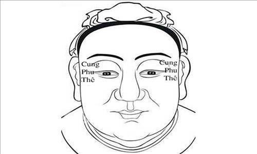 cung-phu-the-tu-tuc