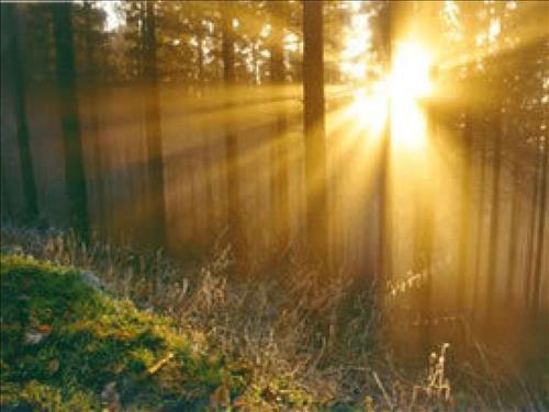 Dự báo thời tiết 3 ngày tới 12-14/7: Tin nắng nóng mới nhất tại Bắc Bộ
