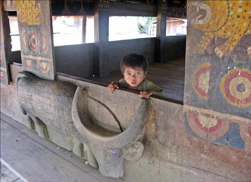 tuc-khoc-trau-cua-nguoi-Co-Tu-tai-Quang-Nam---hinh-anh-trau-trong-van-hoa