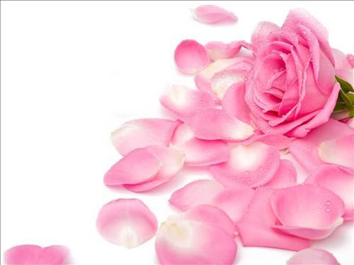 nguoi co van menh dao hoa
