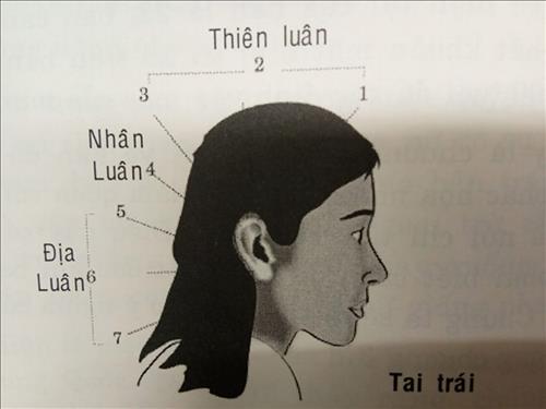 van-so-tuoi-nien-thieu-1-7-nu