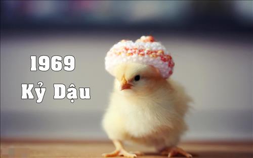 Sinh năm 1969 mệnh gì? Tuổi Kỷ Dậu hợp màu nào, hướng nào?