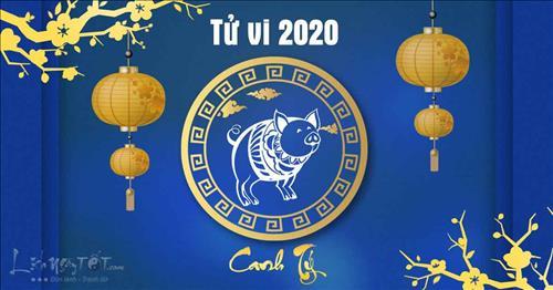 Tử vi tuổi Hợi năm Canh Tý 2020: Tình tiền bất ổn, tổn thương chực chờ