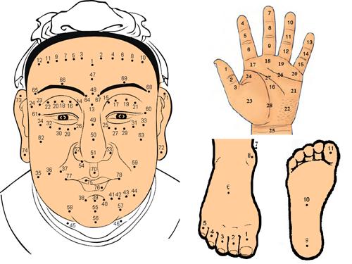 Xem bói nốt ruồi toàn thân: Giải mã ý nghĩa gần 250 nốt ruồi trên cơ thể nam nữ